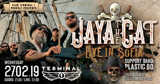 Jaya the cat live at Club Terminal 1